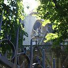behind Notre Dame, Paris by BronReid