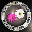 bowl of flowers by Hank Stallings