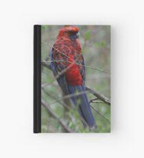 Crimson Rosella Hardcover Journal