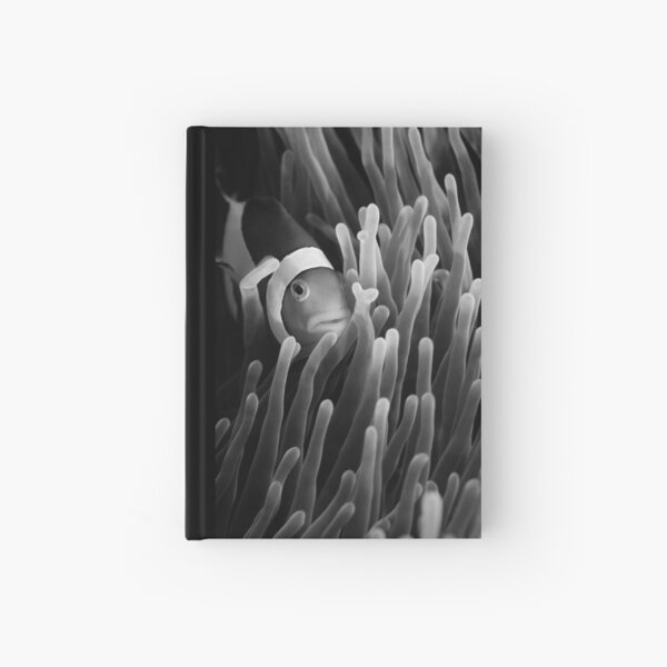 My hiding place Hardcover Journal