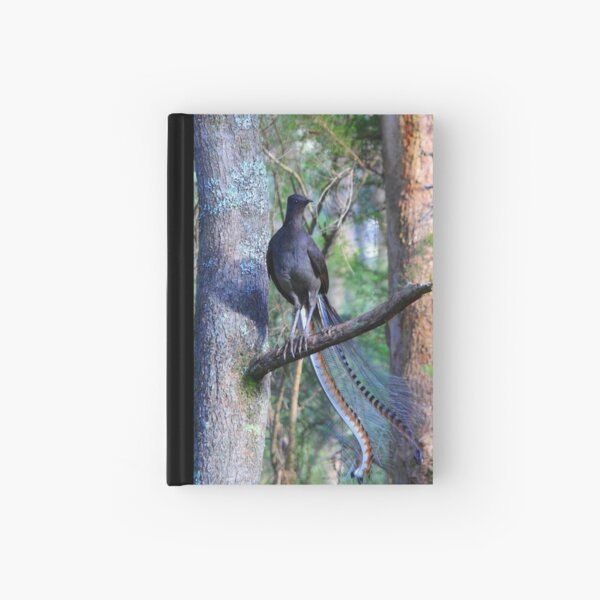 Superb Lyrebird. Hardcover Journal