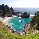 McWay Cove in Spring by Mark Ramstead