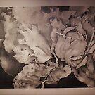 Cabbage Perfected by Jennifer Boilard