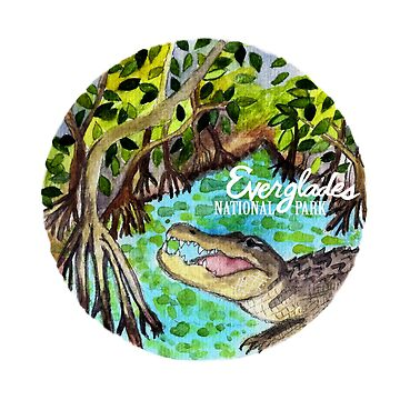 Everglades National Park Watercolor  by shoshannahscrib