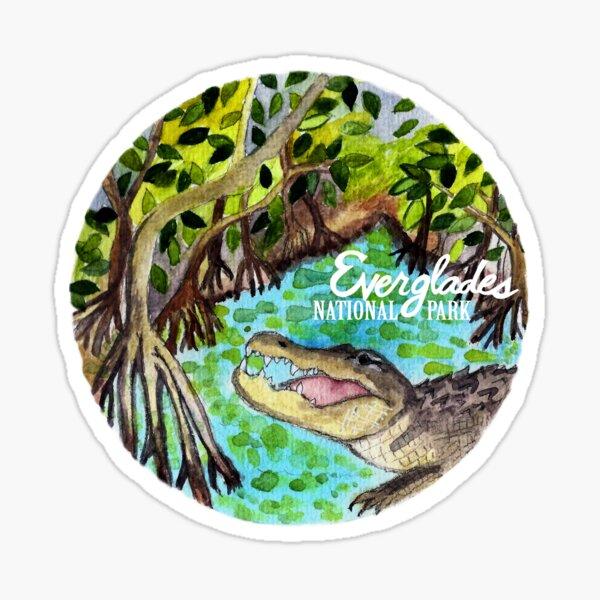 Everglades National Park Watercolor  Sticker