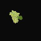 Grapes On Black by Linda Miller Gesualdo
