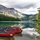 Emerald Lake, Yoho National Park by Teresa Zieba