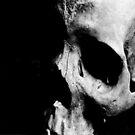 Human Skull by Cellar Door FX