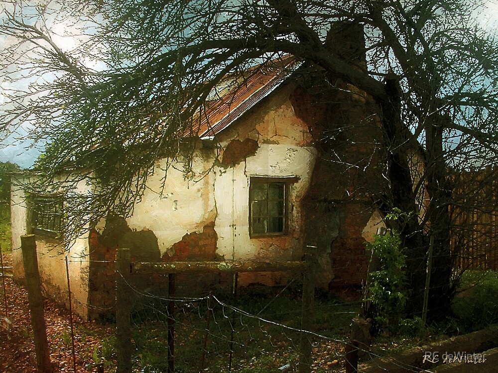 Shack on the Veldt by RC deWinter