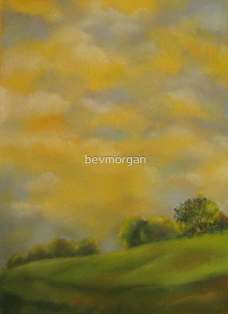 Butternut Sky by bevmorgan