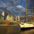 Port Madero in Buenos Aires by Elena Vazquez
