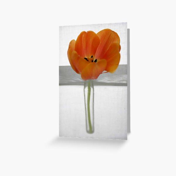 Tulip 2 Greeting Card