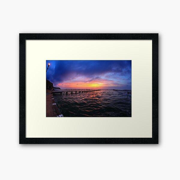 The Swimmer - North Narrabeen Baths Framed Art Print