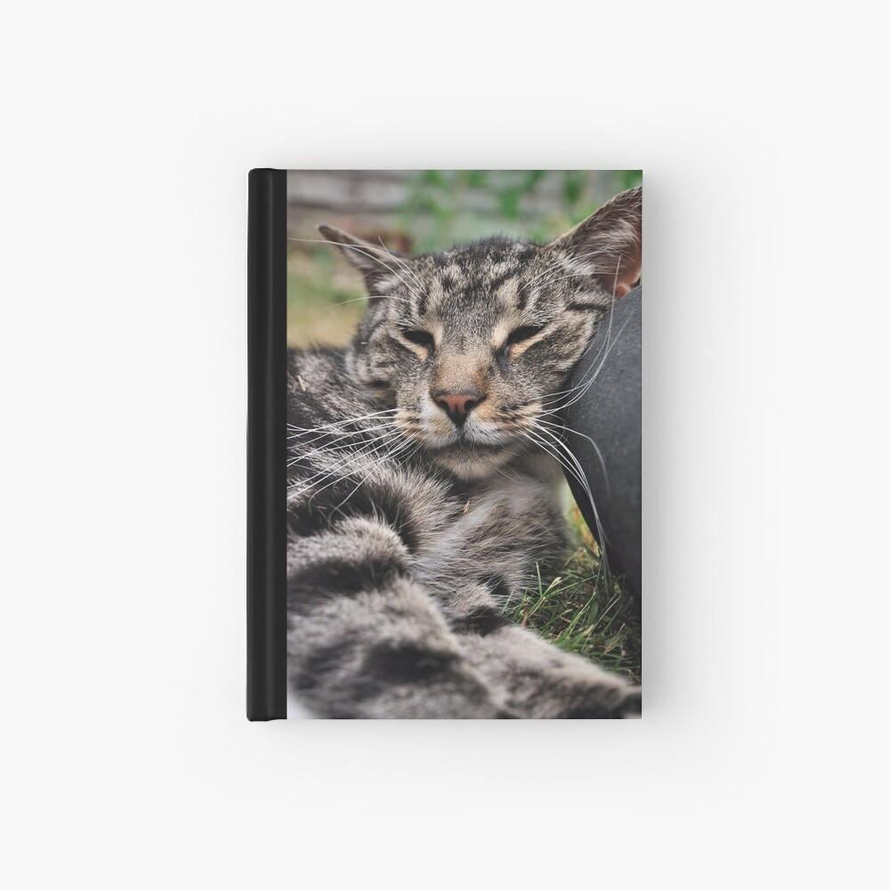 I Kneed a Pillow Hardcover Journal