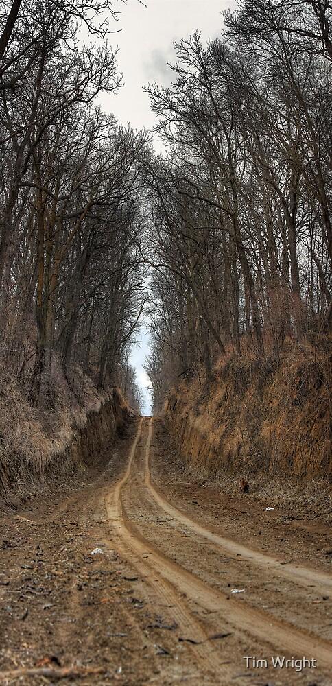 Passageway by Tim Wright