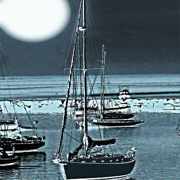 Vineyard Harbor Moon by montuse