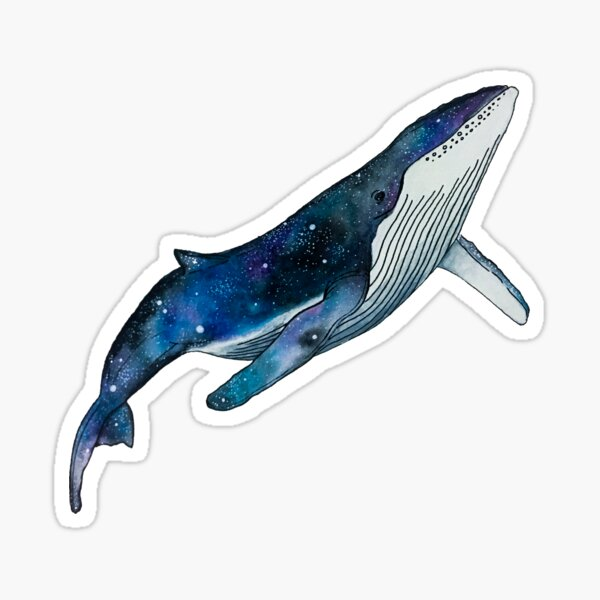 Watercolour galaxy humpback whale  Sticker