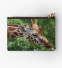 Giraffe Studio Pouch