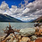 Moose Lake, BC, Canada by Teresa Zieba
