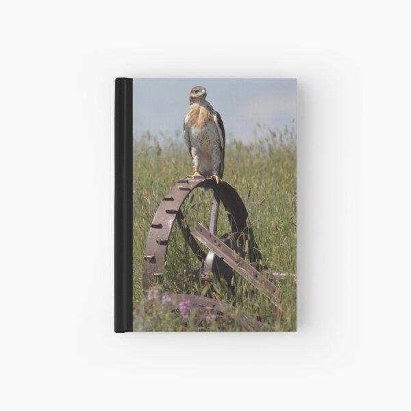 Fledging Ferruginous Hawk Hardcover Journal