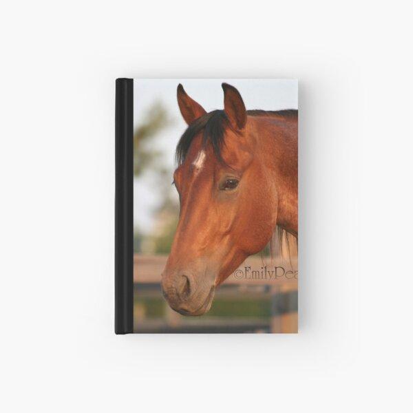 Hayden Headshot Hardcover Journal