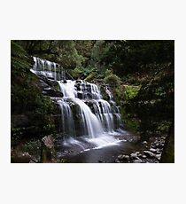 Liffey Falls Photographic Print