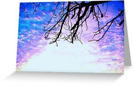 Some Sky by worpledinker