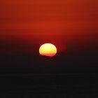 Dana Sunset by Laura Puglia