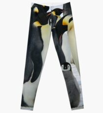 penguins Leggings