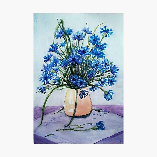 Cornflowers  Photographic Print