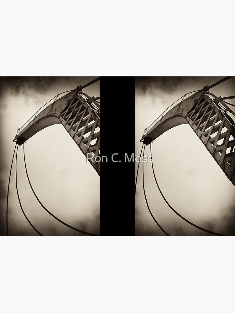 Sky Crane by ronmoss