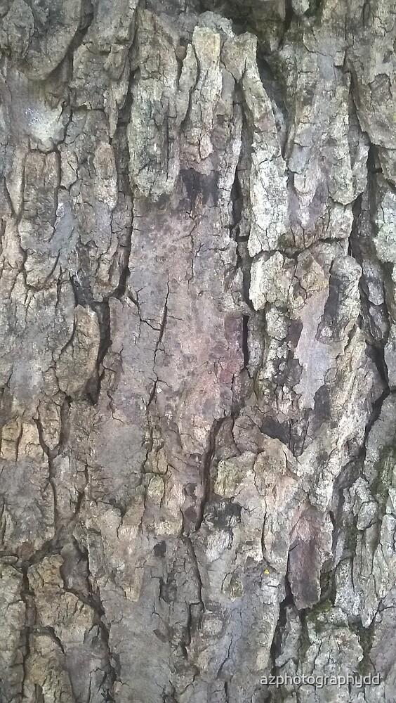 Tree Bark II by azphotographydd