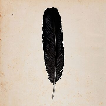 Raven Feather by DanJohnDesign