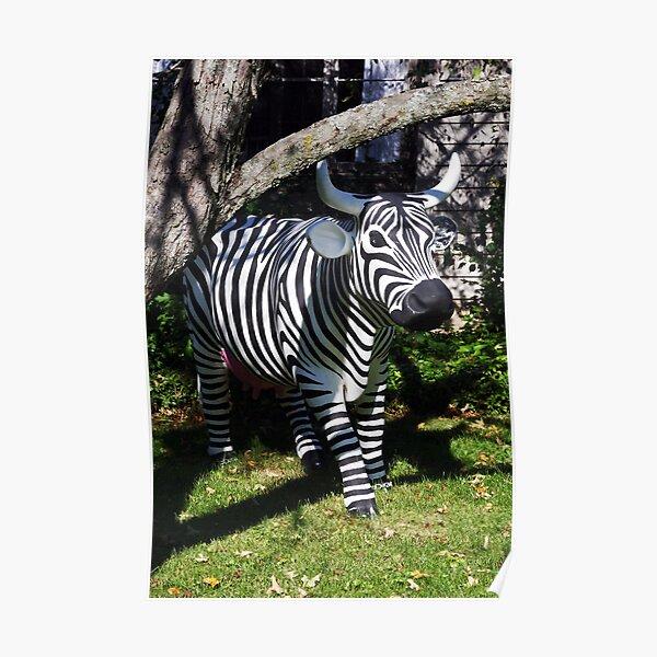 Zebra? Cow? Huh?   Poster