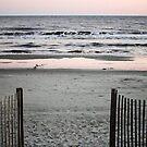 Beach Entrance by Cynthia48