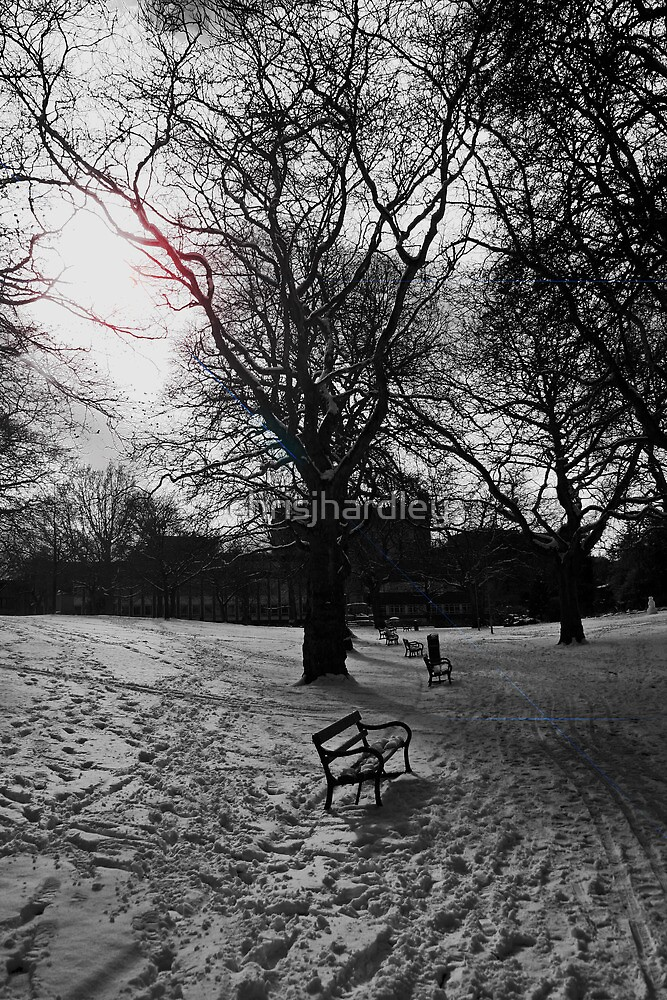 A Walk in the Park by Chris Hardley