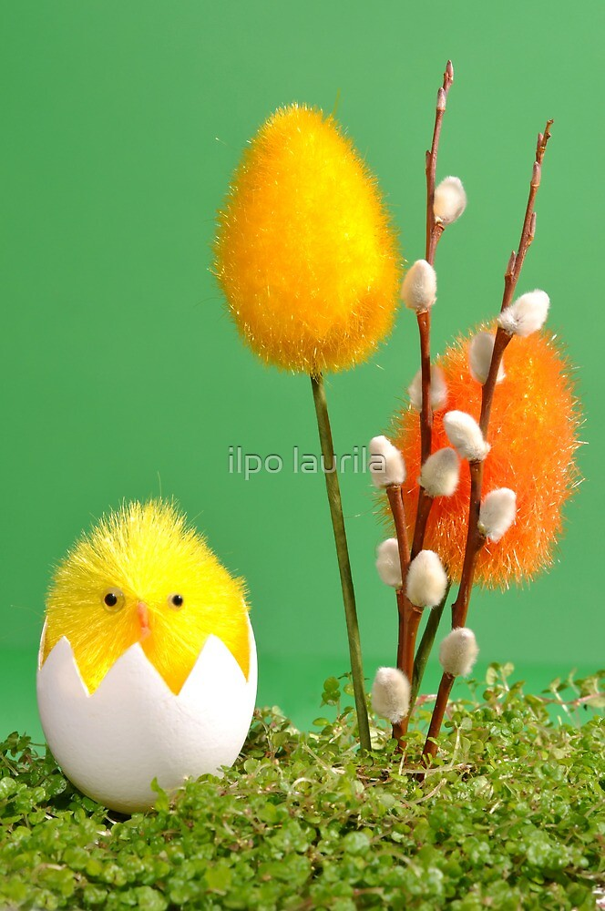 Easter by ilpo laurila