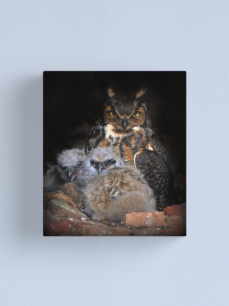 Alternate view of Great Horned Owl and Owlet Canvas Print