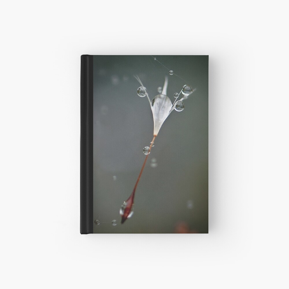 Drops on a web Hardcover Journal