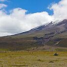 Cotopaxi National Park - Ecuador by Jonathan Bartlett