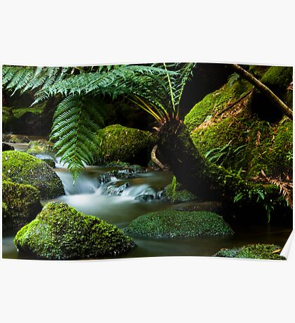 Stream on St Columba Falls walk Poster