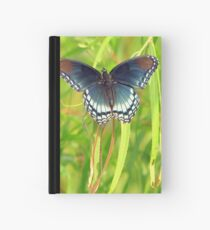 Red-Spotted Purple Admiral Hardcover Journal