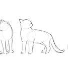 Katzenkonturen von Barbara Baumann Illustration