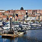 Whitby Marina by John (Mike)  Dobson