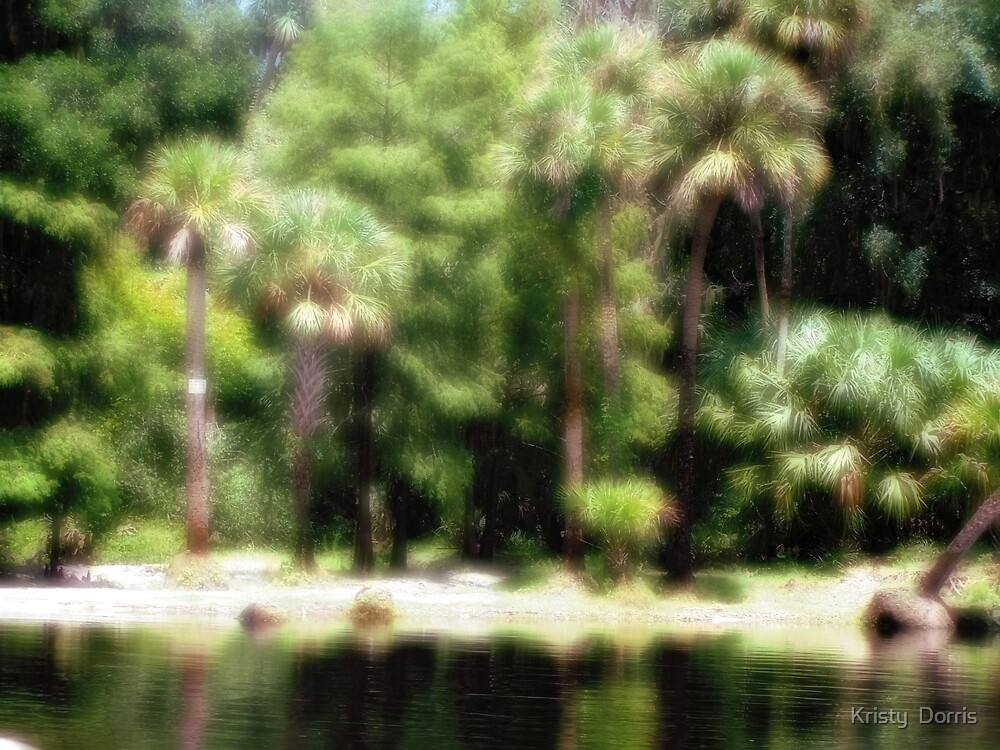 Dreaming of an Oasis by Kristy Dalpez