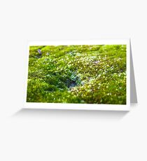 The smallest valley Greeting Card