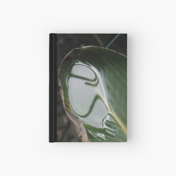 Close Encounters of Which Kind? Hardcover Journal