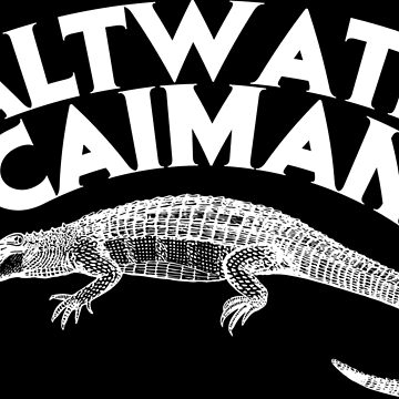 Saltwater caiman crocodile alligator by emphatic
