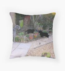 the fluff brothers Throw Pillow
