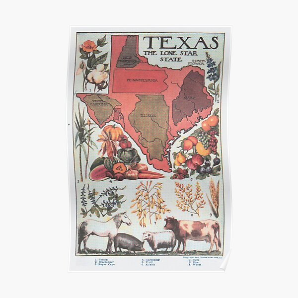 Vintage Texas Agricultural Map (1922) Poster